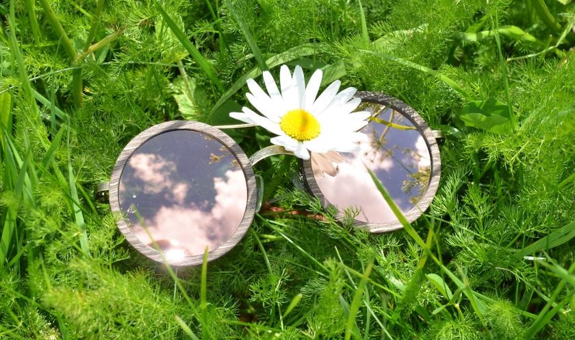Brille im Grün Melanie Hagemeister